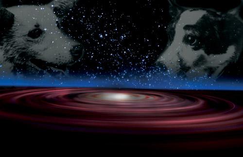 65279;Собаки - космонавты